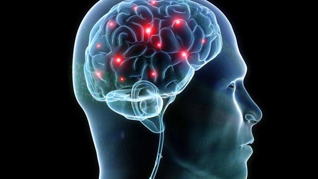 Brain - Synapse