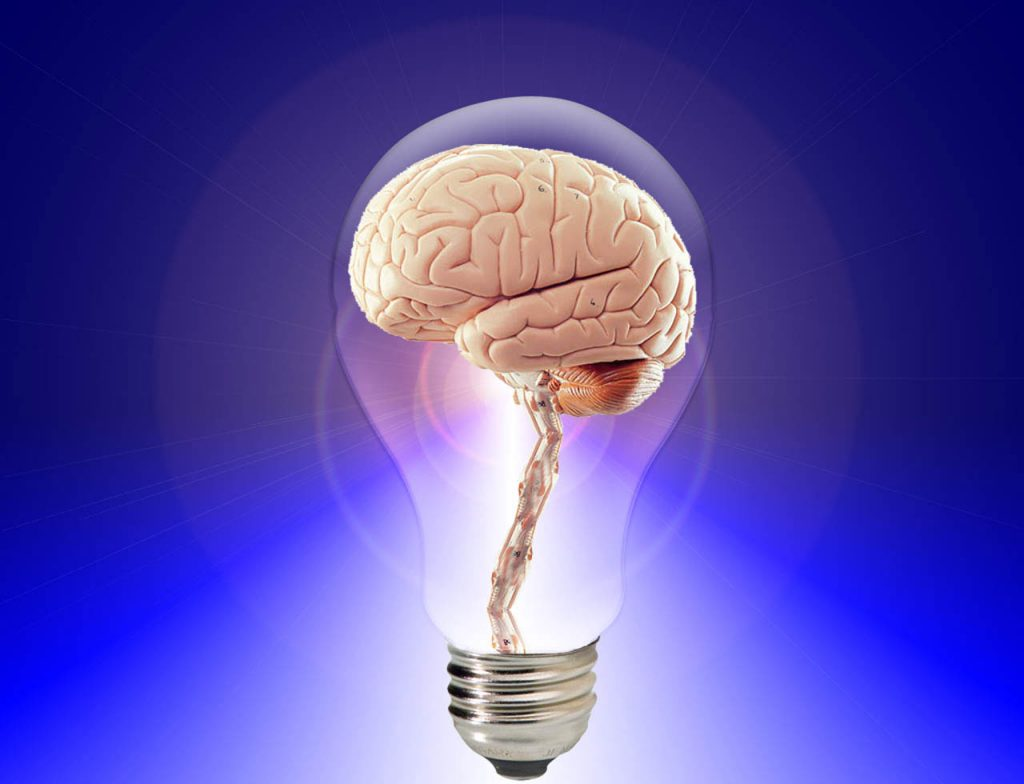 Brain idea - light bulb