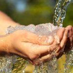 Read More: Understanding Detoxification